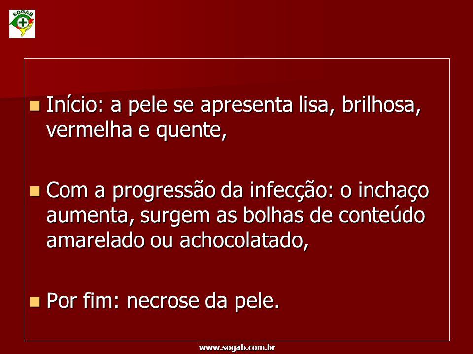 www.sogab.com.br Início: a pele se apresenta lisa, brilhosa, vermelha e quente, Início: a pele se apresenta lisa, brilhosa, vermelha e quente, Com a p