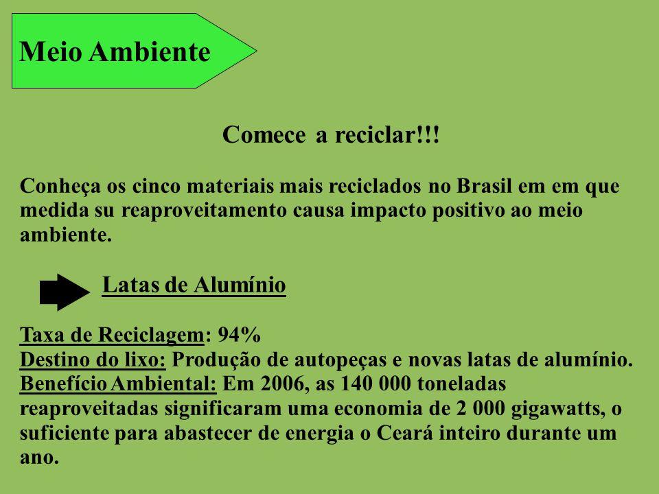 Meio Ambiente Comece a reciclar!!! Conheça os cinco materiais mais reciclados no Brasil em em que medida su reaproveitamento causa impacto positivo ao