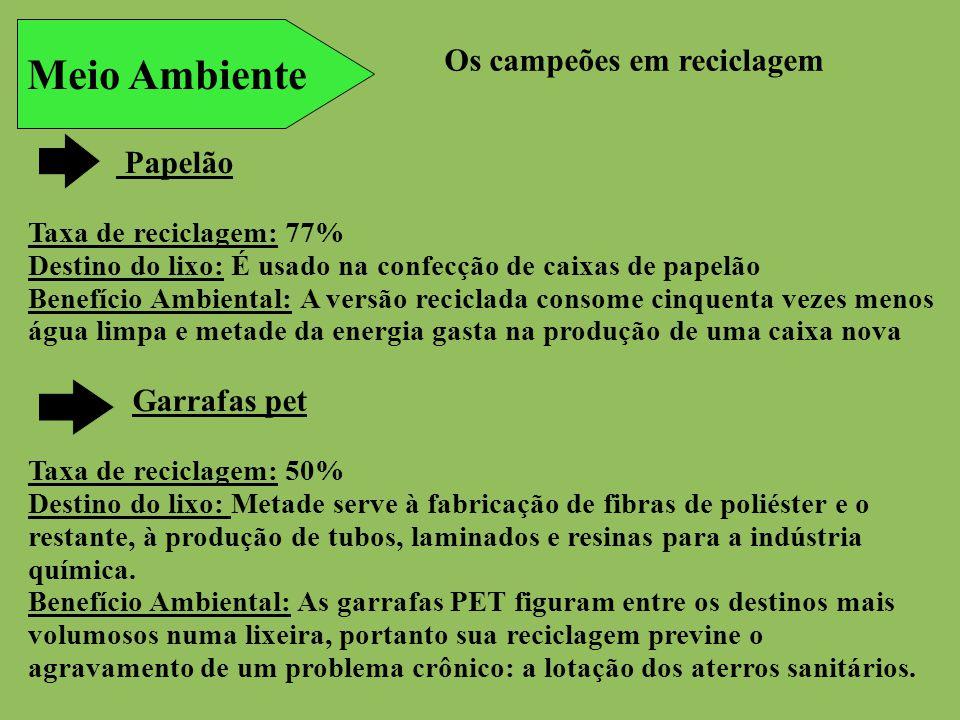 Meio Ambiente Os campeões em reciclagem Papelão Taxa de reciclagem: 77% Destino do lixo: É usado na confecção de caixas de papelão Benefício Ambiental