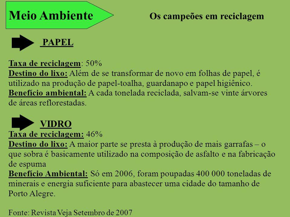 Meio Ambiente PAPEL Taxa de reciclagem: 50% Destino do lixo: Além de se transformar de novo em folhas de papel, é utilizado na produção de papel-toalh