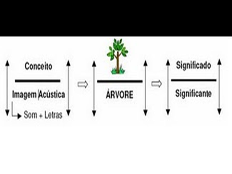 O signo é arbitrário – diferentes línguas têm diferentes sistemas de classificação.