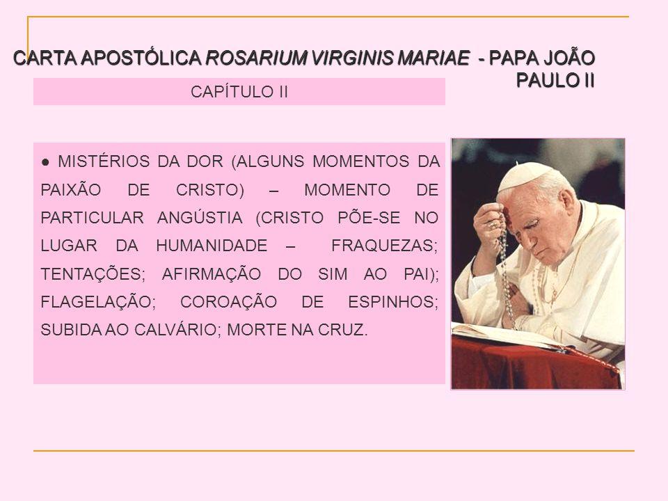 CARTA APOSTÓLICA ROSARIUM VIRGINIS MARIAE - PAPA JOÃO PAULO II CAPÍTULO II MISTÉRIOS DA DOR (ALGUNS MOMENTOS DA PAIXÃO DE CRISTO) – MOMENTO DE PARTICULAR ANGÚSTIA (CRISTO PÕE-SE NO LUGAR DA HUMANIDADE – FRAQUEZAS; TENTAÇÕES; AFIRMAÇÃO DO SIM AO PAI); FLAGELAÇÃO; COROAÇÃO DE ESPINHOS; SUBIDA AO CALVÁRIO; MORTE NA CRUZ.