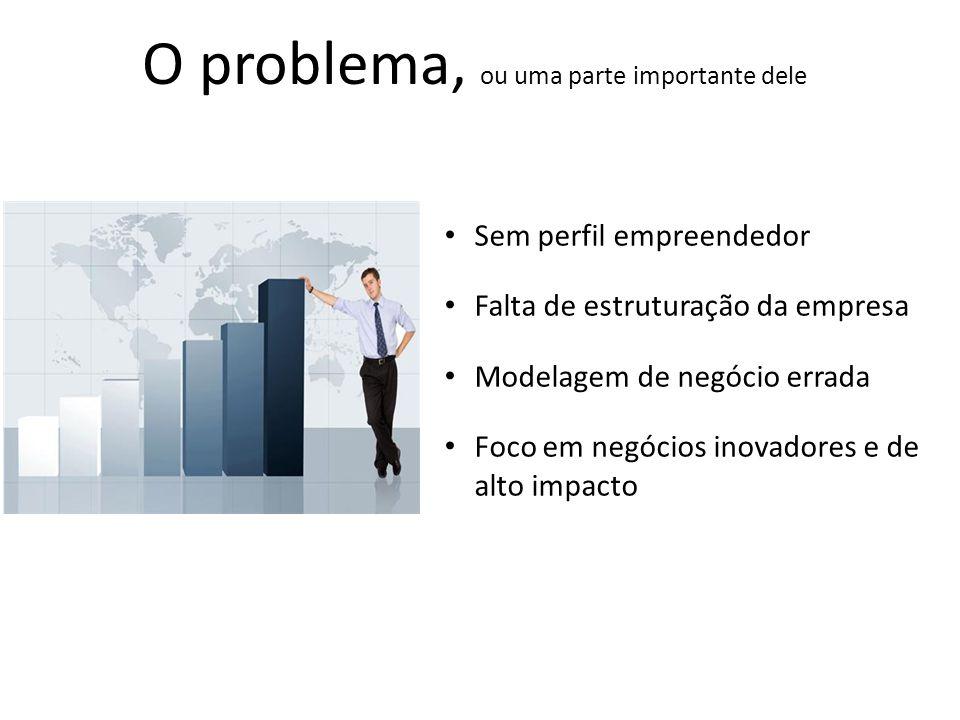 O problema, ou uma parte importante dele Sem perfil empreendedor Falta de estruturação da empresa Modelagem de negócio errada Foco em negócios inovadores e de alto impacto