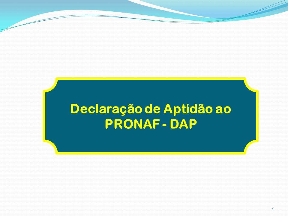 Declaração de Aptidão ao PRONAF - DAP 1