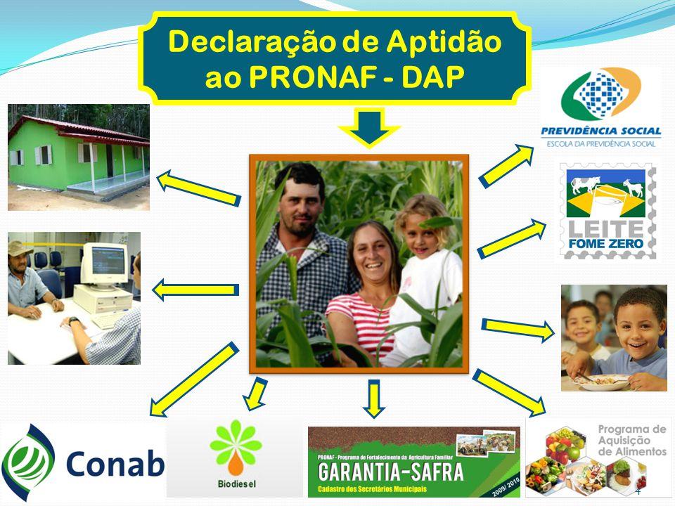 Declaração de Aptidão ao PRONAF - DAP 4