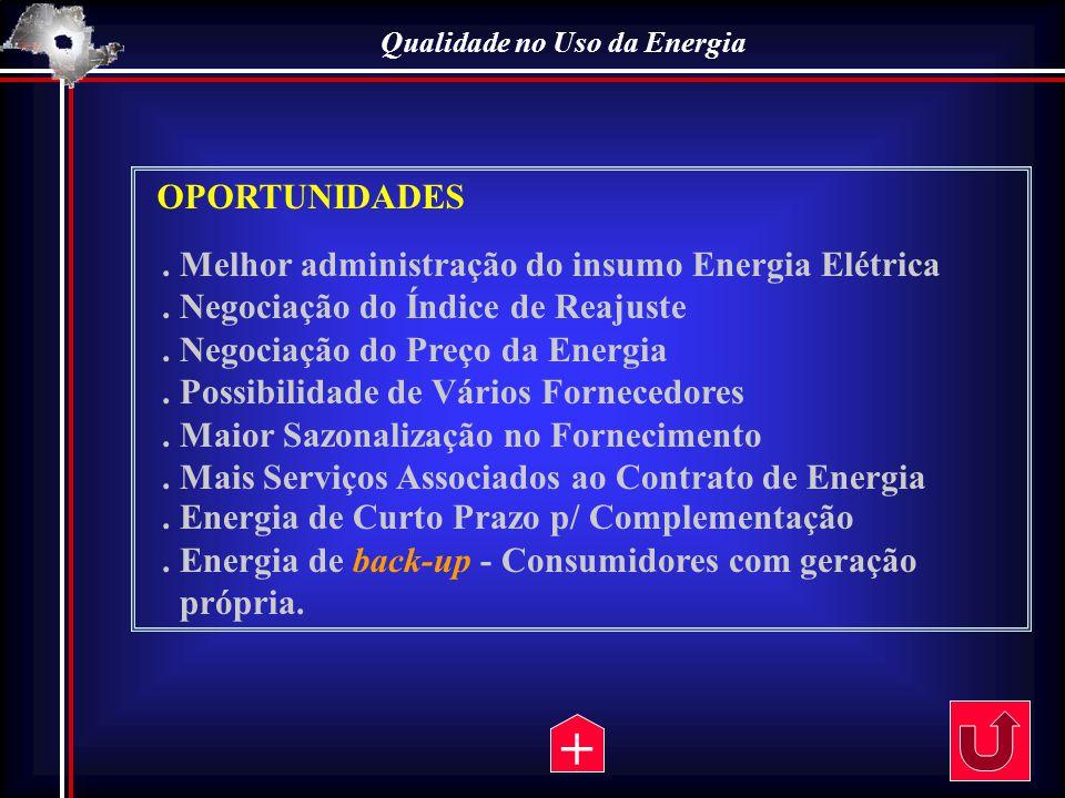 OPORTUNIDADES. Melhor administração do insumo Energia Elétrica. Negociação do Índice de Reajuste. Negociação do Preço da Energia. Possibilidade de Vár