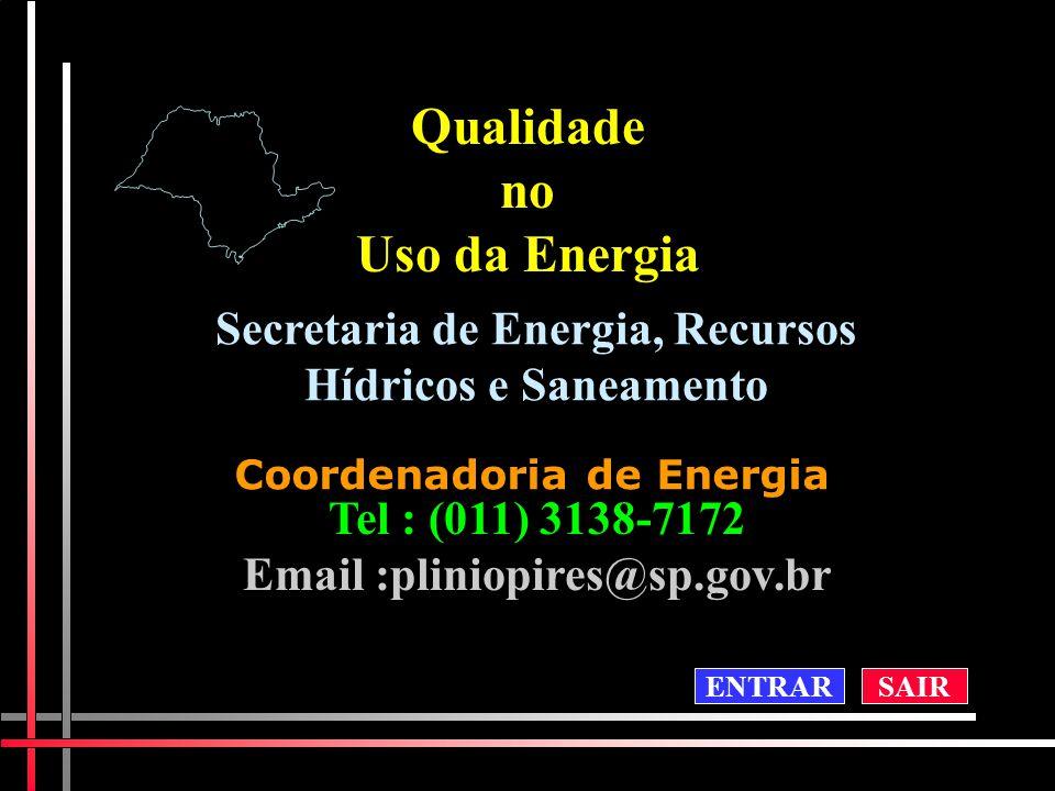 Qualidadeno Uso da Energia Secretaria de Energia, Recursos Hídricos e Saneamento Coordenadoria de Energia Tel : (011) 3138-7172 Email :pliniopires@sp.