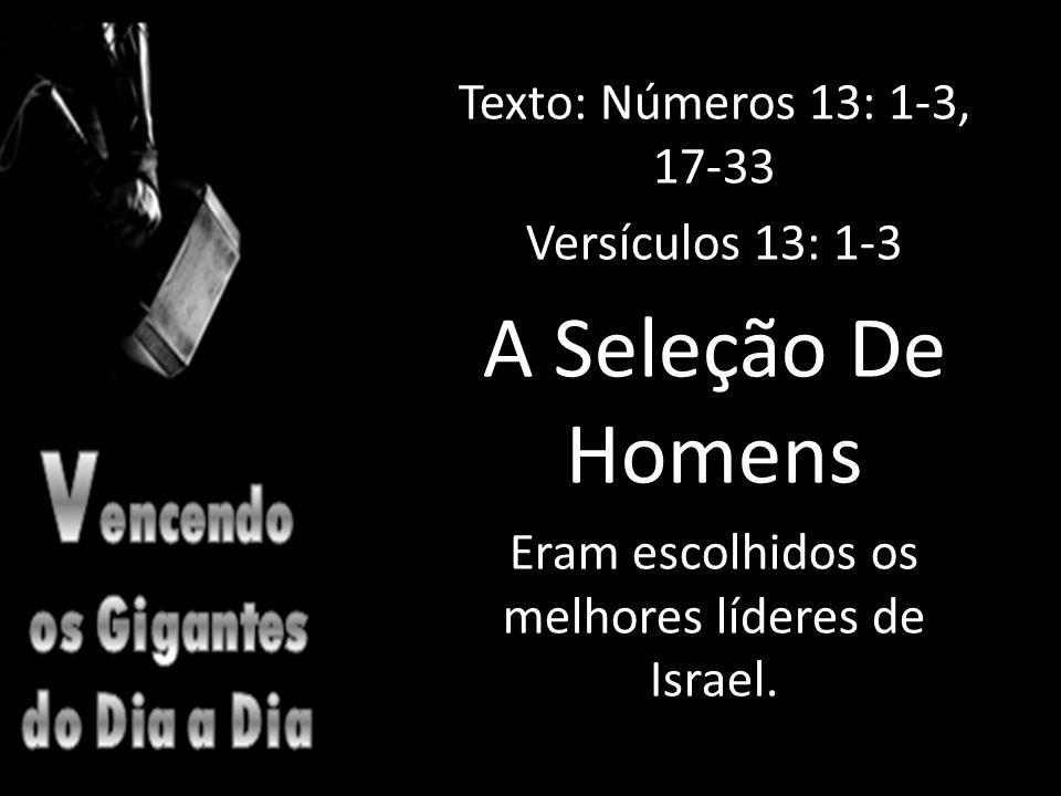 Texto: Números 13: 1-3, 17-33 Versículos 13: 1-3 A Seleção De Homens Eram escolhidos os melhores líderes de Israel.