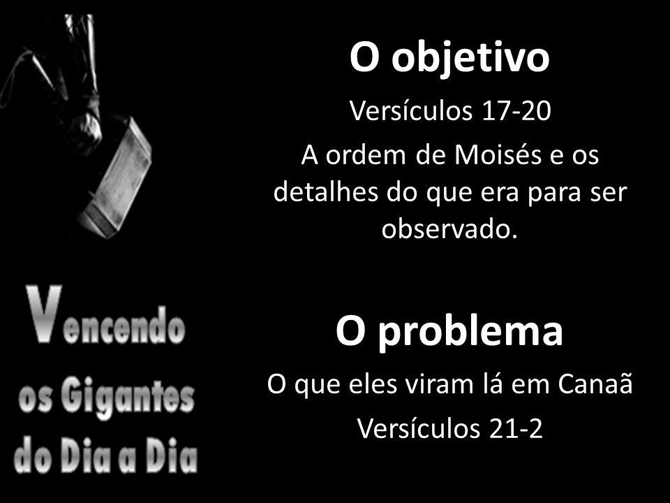 O objetivo Versículos 17-20 A ordem de Moisés e os detalhes do que era para ser observado.