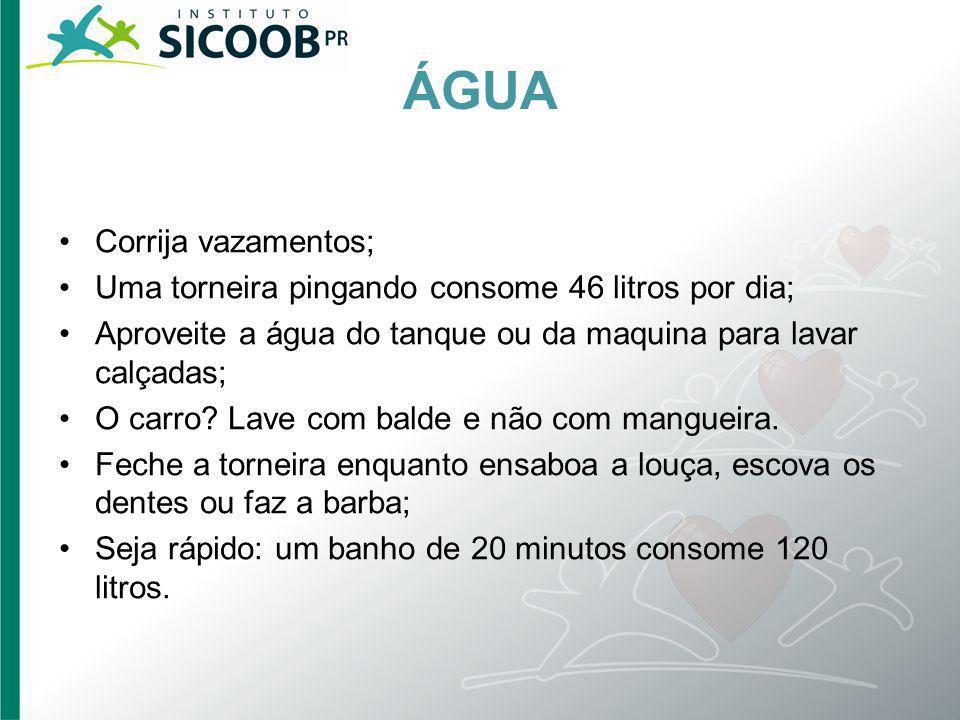 ÁGUA Corrija vazamentos; Uma torneira pingando consome 46 litros por dia; Aproveite a água do tanque ou da maquina para lavar calçadas; O carro? Lave