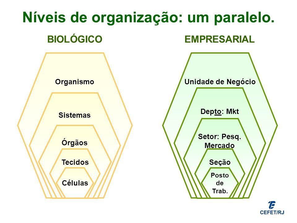Níveis de organização: um paralelo. Organismo Sistemas Órgãos Tecidos Células BIOLÓGICOEMPRESARIAL Unidade de Negócio Depto: Mkt Setor: Pesq. Mercado