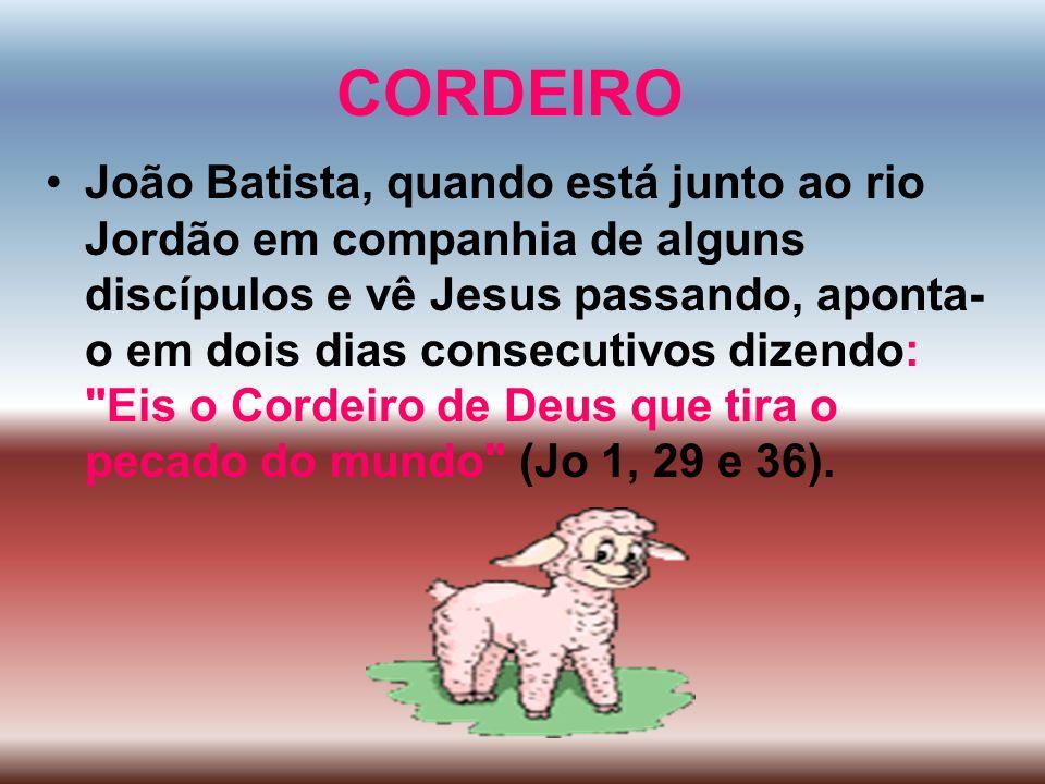 CORDEIRO João Batista, quando está junto ao rio Jordão em companhia de alguns discípulos e vê Jesus passando, aponta- o em dois dias consecutivos dize
