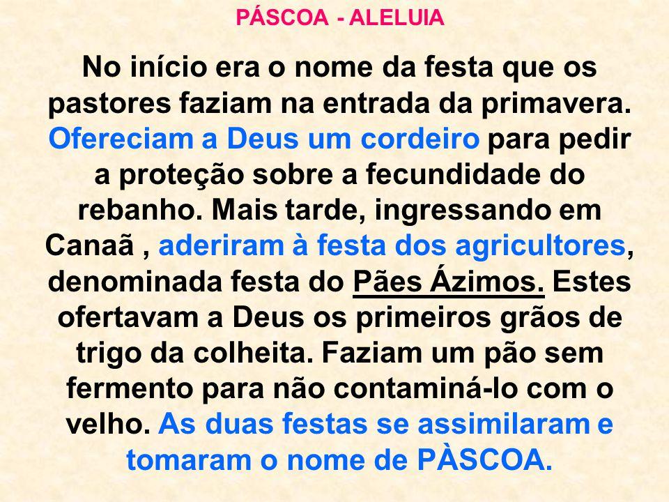 PÁSCOA - ALELUIA No início era o nome da festa que os pastores faziam na entrada da primavera. Ofereciam a Deus um cordeiro para pedir a proteção sobr