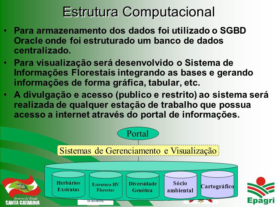 Estrutura Computacional Para armazenamento dos dados foi utilizado o SGBD Oracle onde foi estruturado um banco de dados centralizado.