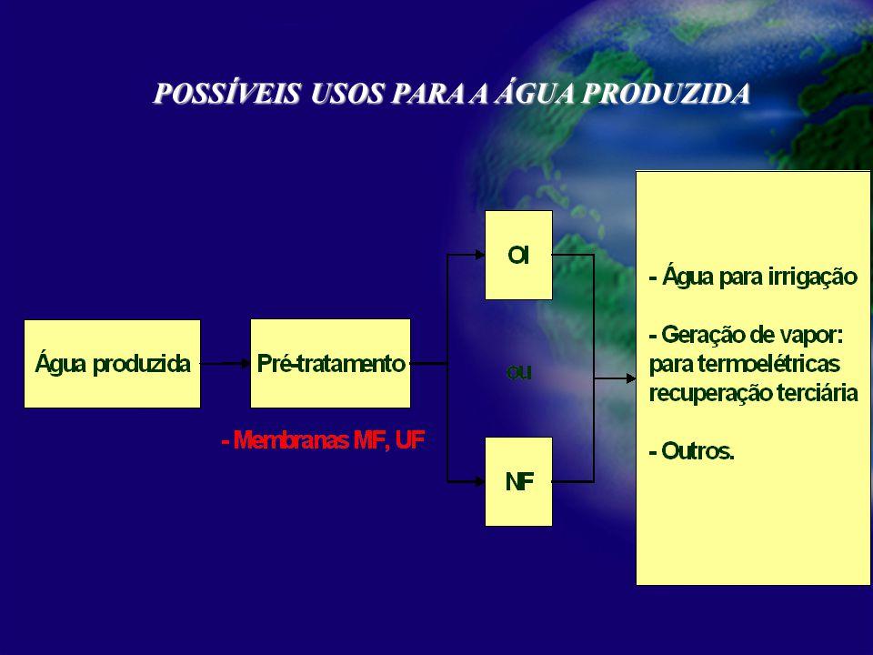 Processamento primário de petróleo POSSÍVEIS USOS PARA A ÁGUA PRODUZIDA