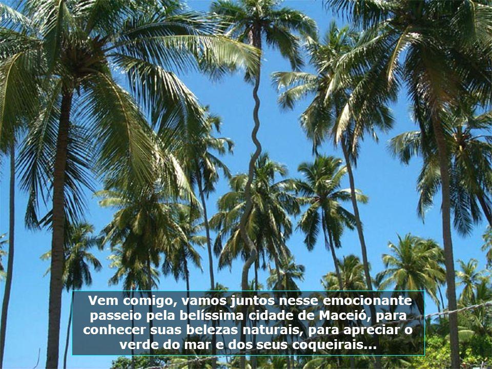 Vem comigo, vamos juntos nesse emocionante passeio pela belíssima cidade de Maceió, para conhecer suas belezas naturais, para apreciar o verde do mar e dos seus coqueirais...