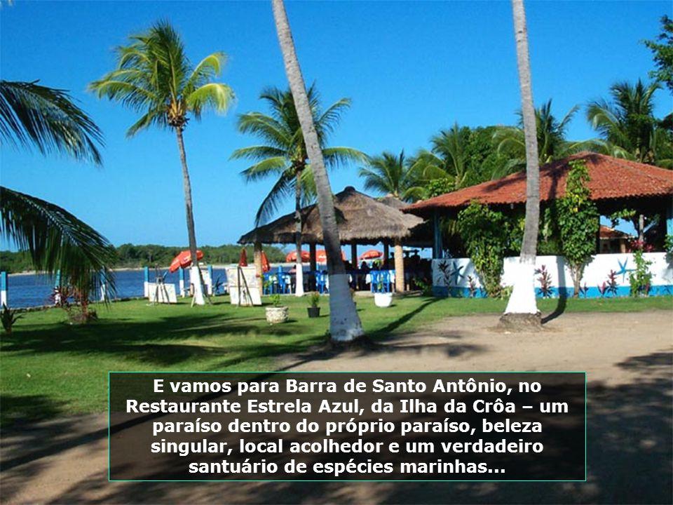 Outro lugar especial, de beleza incomparável, é a Praia do Gunga, uma das mais belas de Alagoas. Essa visão foi tomada do Mirante do Gunga. Olha só a