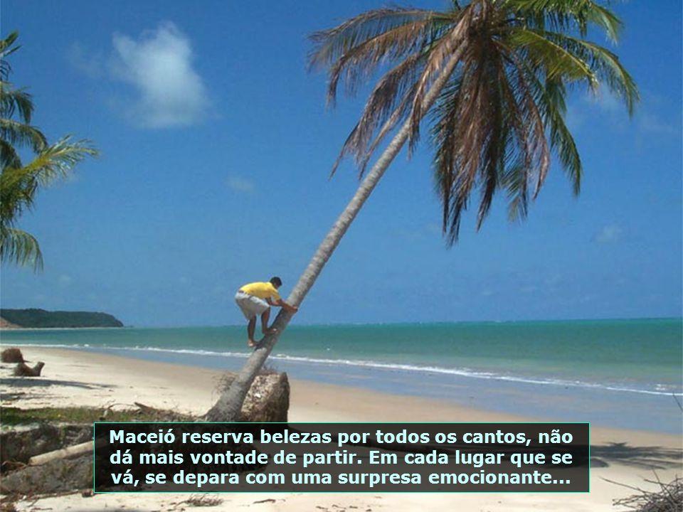 Os milagres das areias coloridas na Praia de Carro Quebrado, na Ilha da Crôa, são impressionantes. Aqui só se chega de Buggy, percorrendo a praia...