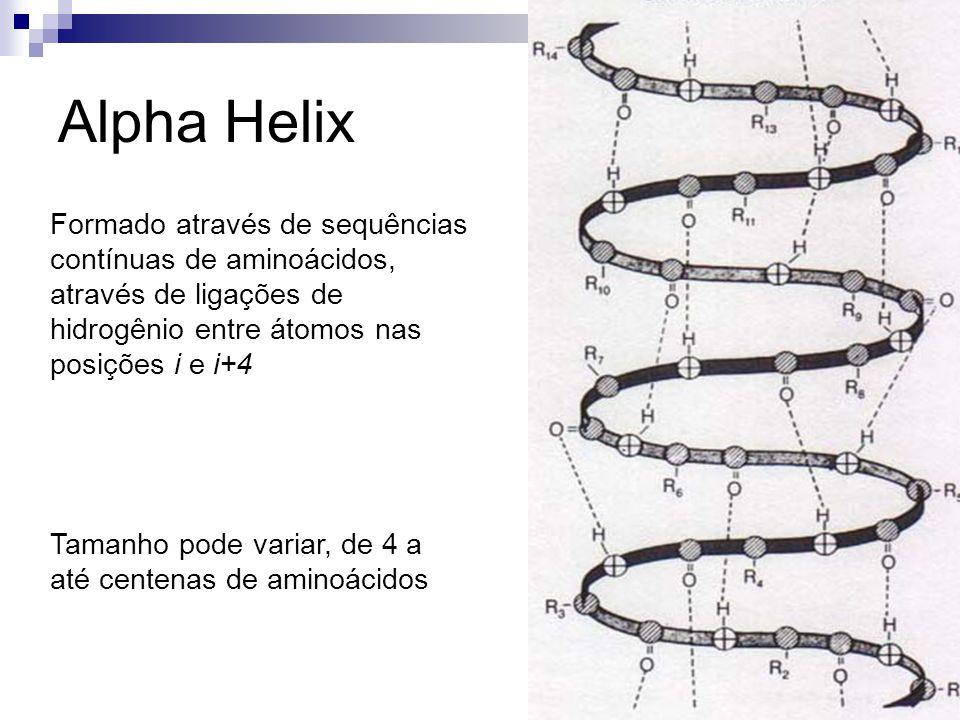 Alpha Helix Formado através de sequências contínuas de aminoácidos, através de ligações de hidrogênio entre átomos nas posições i e i+4 Tamanho pode v