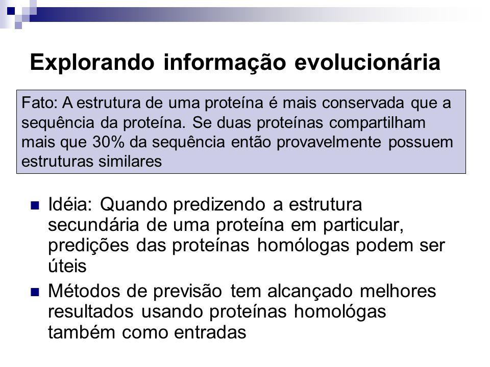 Explorando informação evolucionária Idéia: Quando predizendo a estrutura secundária de uma proteína em particular, predições das proteínas homólogas p