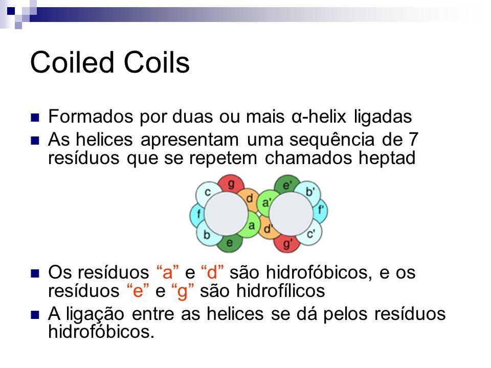 Formados por duas ou mais α-helix ligadas As helices apresentam uma sequência de 7 resíduos que se repetem chamados heptad Os resíduos a e d são hidro