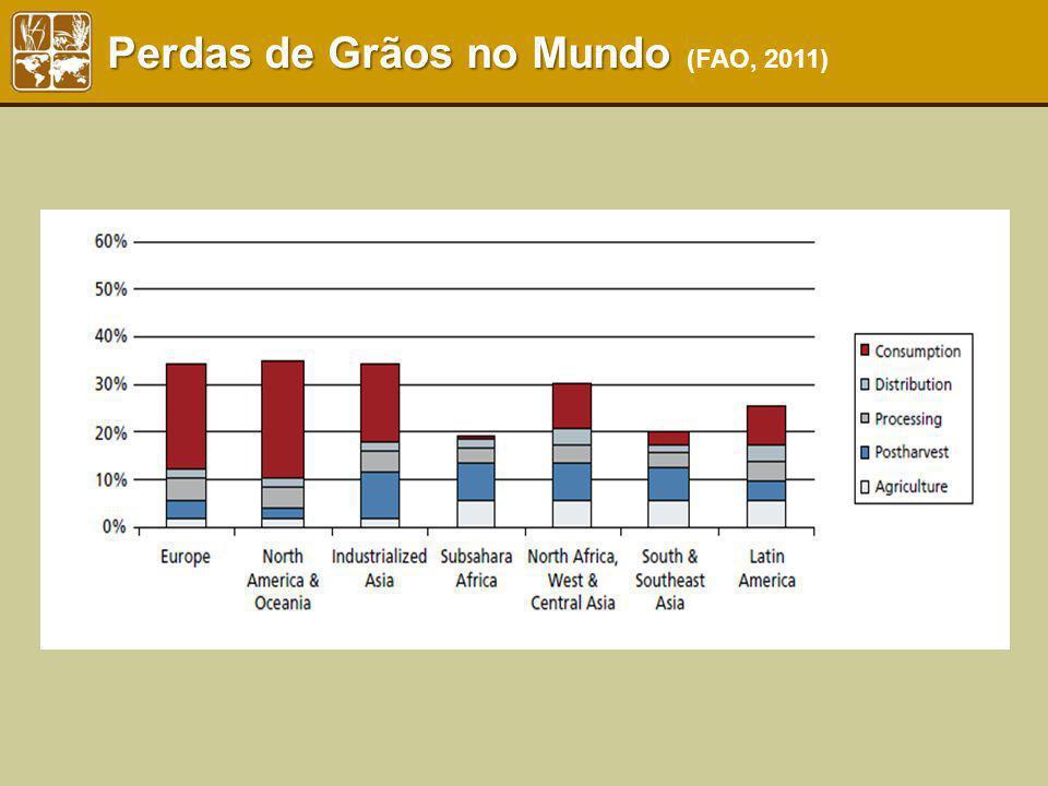 Perdas de Grãos no Mundo Perdas de Grãos no Mundo (FAO, 2011)