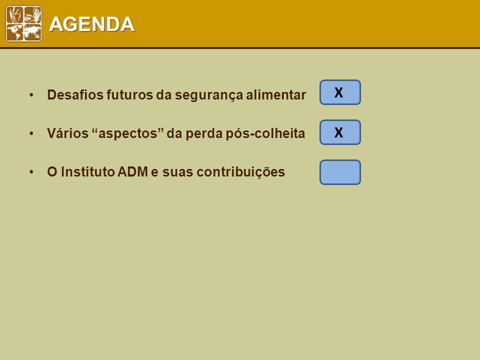 AGENDA Desafios futuros da segurança alimentar Vários aspectos da perda pós-colheita O Instituto ADM e suas contribuições X X