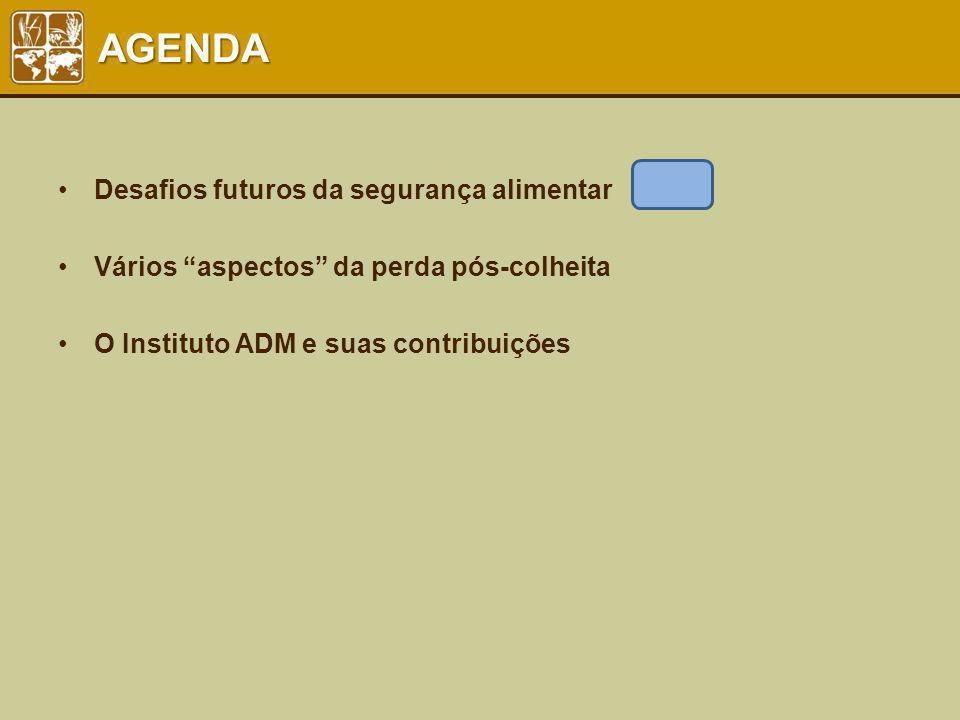 AGENDA Desafios futuros da segurança alimentar Vários aspectos da perda pós-colheita O Instituto ADM e suas contribuições