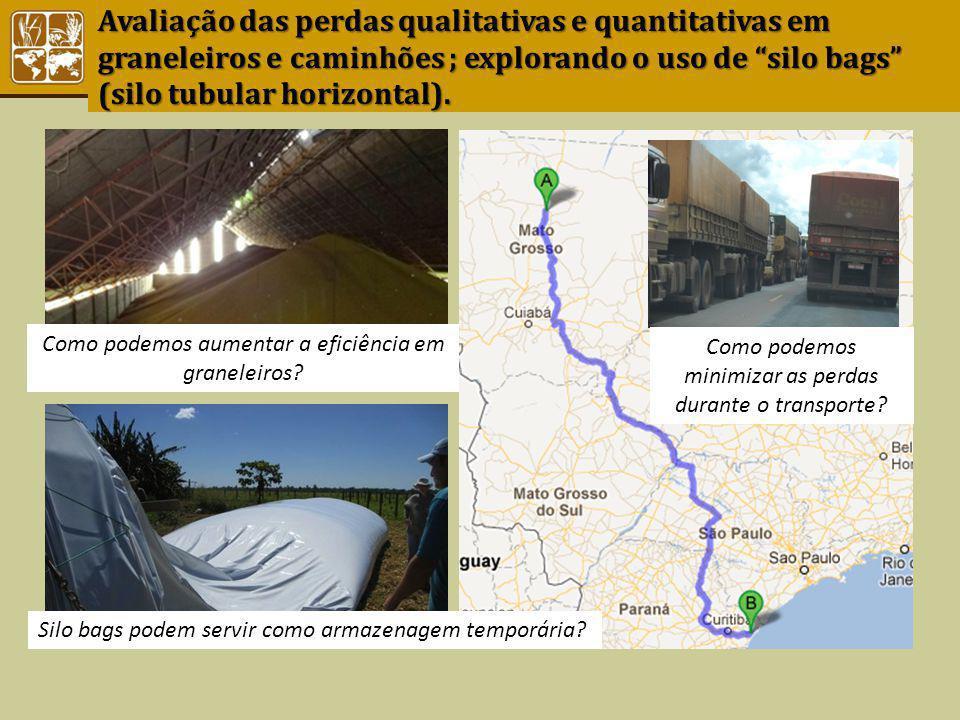 Avaliação das perdas qualitativas e quantitativas em graneleiros e caminhões ; explorando o uso de silo bags (silo tubular horizontal). Como podemos a