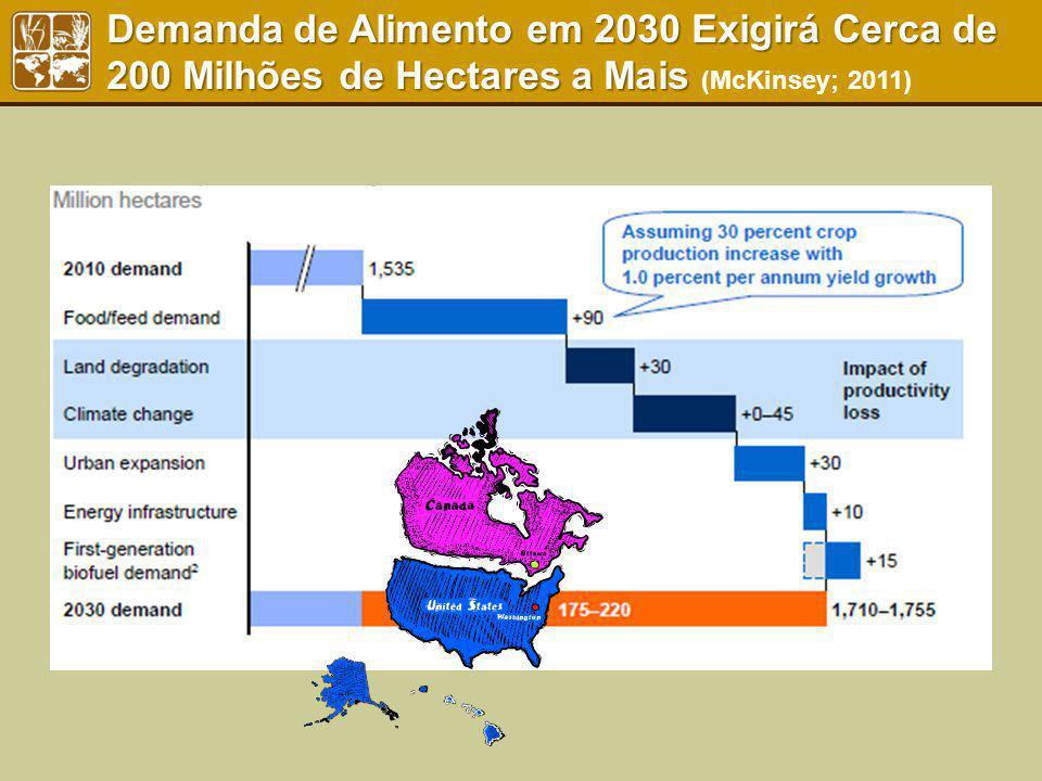 Demanda de Alimento em 2030 Exigirá Cerca de 200 Milhões de Hectares a Mais Demanda de Alimento em 2030 Exigirá Cerca de 200 Milhões de Hectares a Mai
