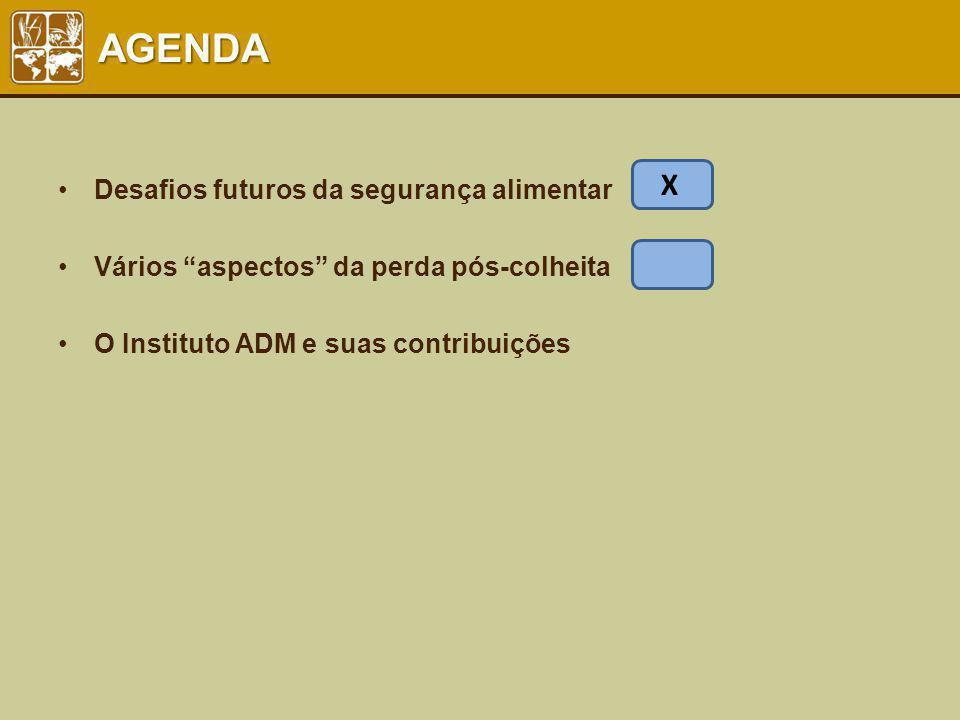 AGENDA Desafios futuros da segurança alimentar Vários aspectos da perda pós-colheita O Instituto ADM e suas contribuições X