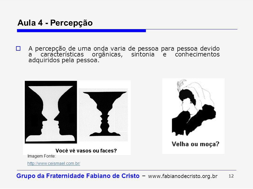 Grupo da Fraternidade Fabiano de Cristo – www.fabianodecristo.org.br 12 Aula 4 - Percepção A percepção de uma onda varia de pessoa para pessoa devido