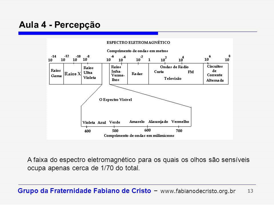 Grupo da Fraternidade Fabiano de Cristo – www.fabianodecristo.org.br 13 Aula 4 - Percepção A faixa do espectro eletromagnético para os quais os olhos