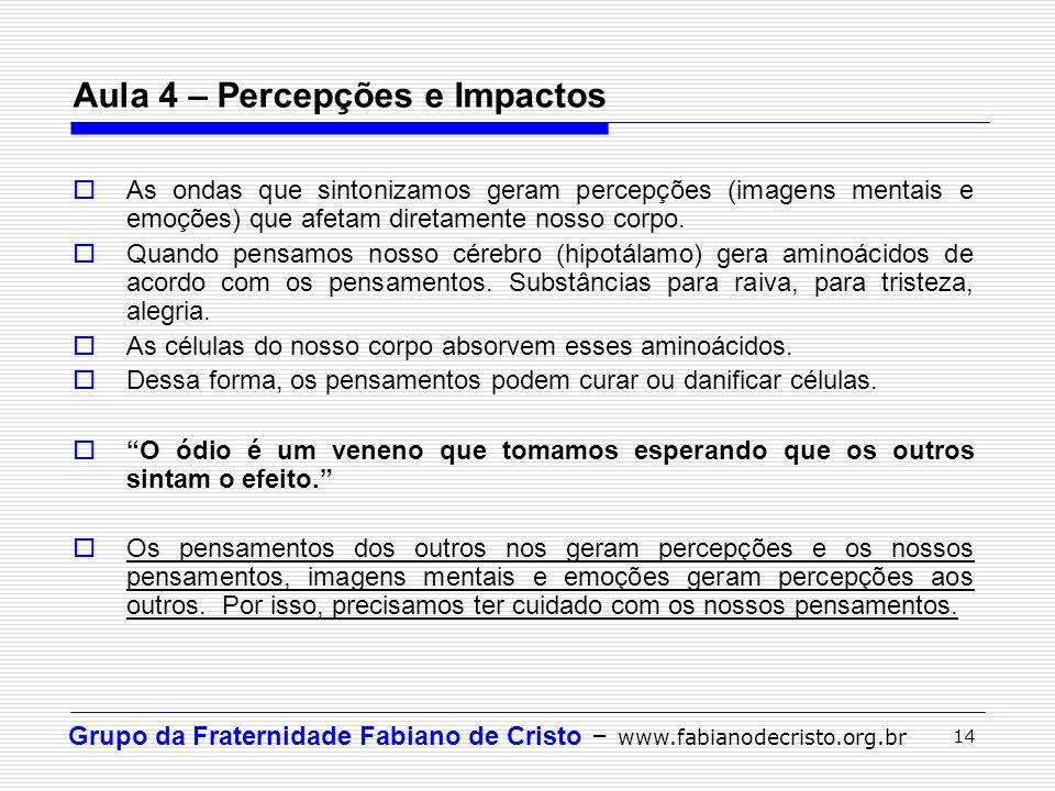 Grupo da Fraternidade Fabiano de Cristo – www.fabianodecristo.org.br 14 Aula 4 – Percepções e Impactos As ondas que sintonizamos geram percepções (ima