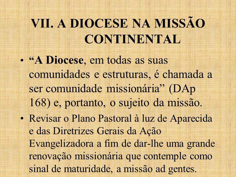 VII. A DIOCESE NA MISSÃO CONTINENTAL A Diocese, em todas as suas comunidades e estruturas, é chamada a ser comunidade missionária (DAp 168) e, portant
