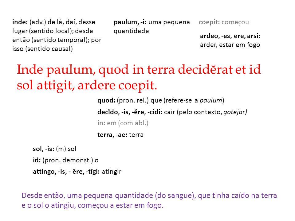 Inde paulum, quod in terra decidĕrat et id sol attigit, ardere coepit.