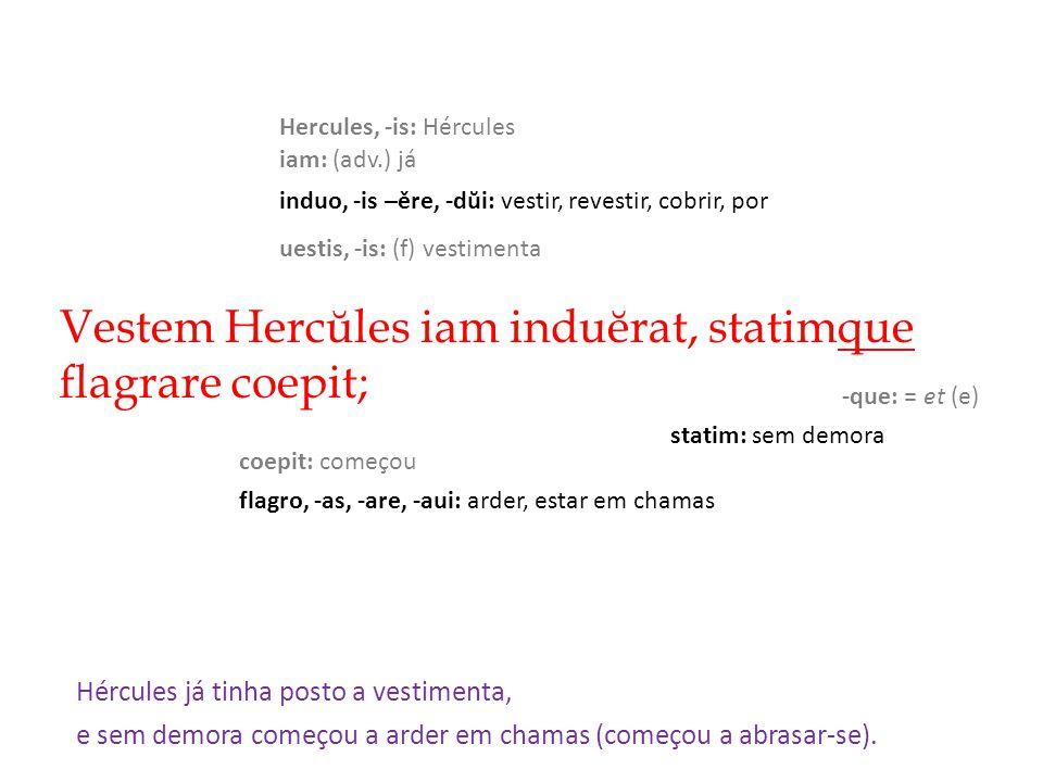 Vestem Hercŭles iam induĕrat, statimque flagrare coepit; Hércules já tinha posto a vestimenta, induo, -is –ěre, -dŭi: vestir, revestir, cobrir, por Hercules, -is: Hércules uestis, -is: (f) vestimenta iam: (adv.) já coepit: começou flagro, -as, -are, -aui: arder, estar em chamas -que: = et (e) statim: sem demora e sem demora começou a arder em chamas (começou a abrasar-se).