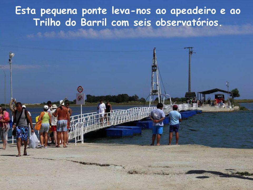 A Ria Formosa começa aonde acaba a Praia da Manta-Rota (concelho de Vila Real Stº António) e termina junto à Praia do Ancão (concelho de Loulé). Um im