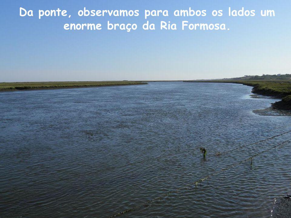 A água das chuvas era também encaminhada para os poços ou para as cisternas subterrâneas.