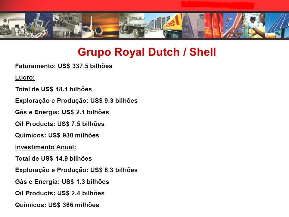 Faturamento: US$ 337.5 bilhões Lucro: Total de US$ 18.1 bilhões Exploração e Produção: US$ 9.3 bilhões Gás e Energia: US$ 2.1 bilhões Oil Products: US$ 7.5 bilhões Químicos: US$ 930 milhões Investimento Anual: Total de US$ 14.9 bilhões Exploração e Produção: US$ 8.3 bilhões Gás e Energia: US$ 1.3 bilhões Oil Products: US$ 2.4 bilhões Químicos: US$ 366 milhões Grupo Royal Dutch / Shell