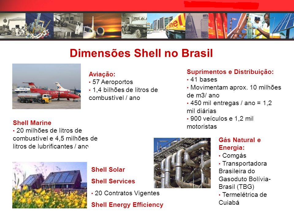 Aviação: 57 Aeroportos 1,4 bilhões de litros de combustível / ano Gás Natural e Energia: Comgás Transportadora Brasileira do Gasoduto Bolívia- Brasil (TBG) Termelétrica de Cuiabá Shell Marine 20 milhões de litros de combustível e 4,5 milhões de litros de lubrificantes / ano Suprimentos e Distribuição: 41 bases Movimentam aprox.