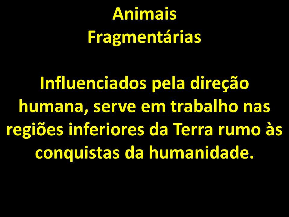 Animais Fragmentárias Influenciados pela direção humana, serve em trabalho nas regiões inferiores da Terra rumo às conquistas da humanidade.