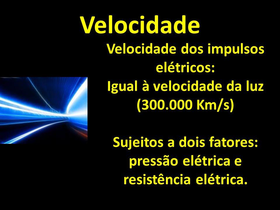 Velocidade Velocidade dos impulsos elétricos: Igual à velocidade da luz (300.000 Km/s) Sujeitos a dois fatores: pressão elétrica e resistência elétrica.