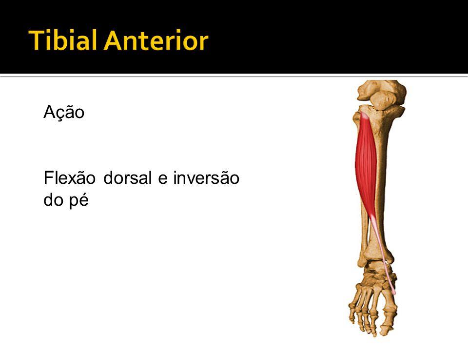 Ação Flexão dorsal e inversão do pé