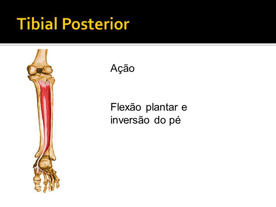 Ação Flexão plantar e inversão do pé
