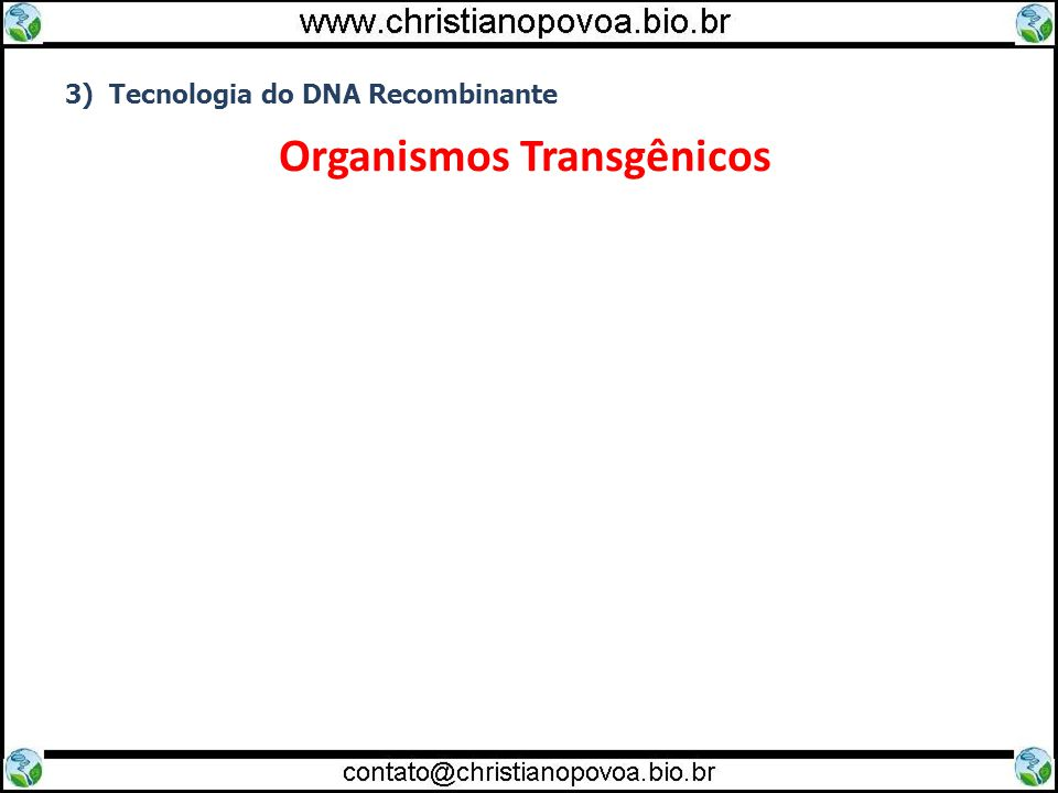 3) Tecnologia do DNA Recombinante Organismos Transgênicos