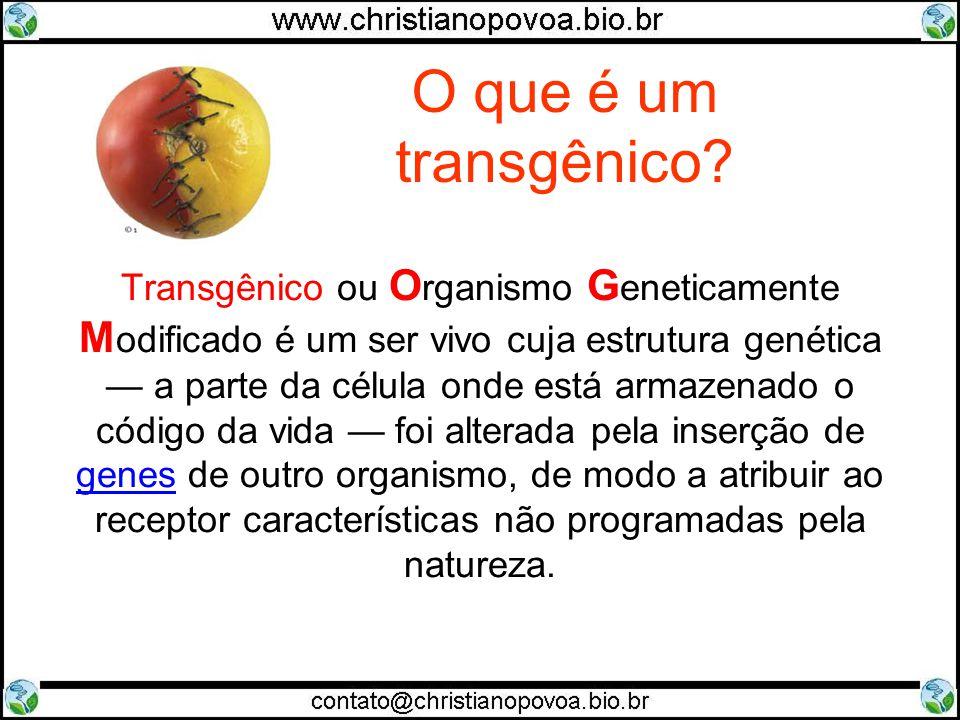 O que é um transgênico? Transgênico ou O rganismo G eneticamente M odificado é um ser vivo cuja estrutura genética a parte da célula onde está armazen