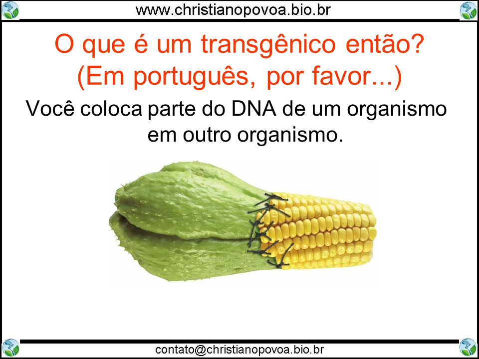 O que é um transgênico então? (Em português, por favor...) Você coloca parte do DNA de um organismo em outro organismo.