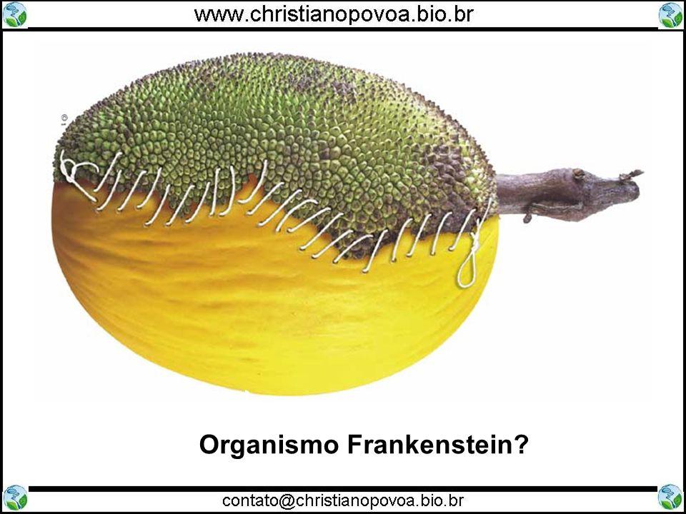 Organismo Frankenstein?