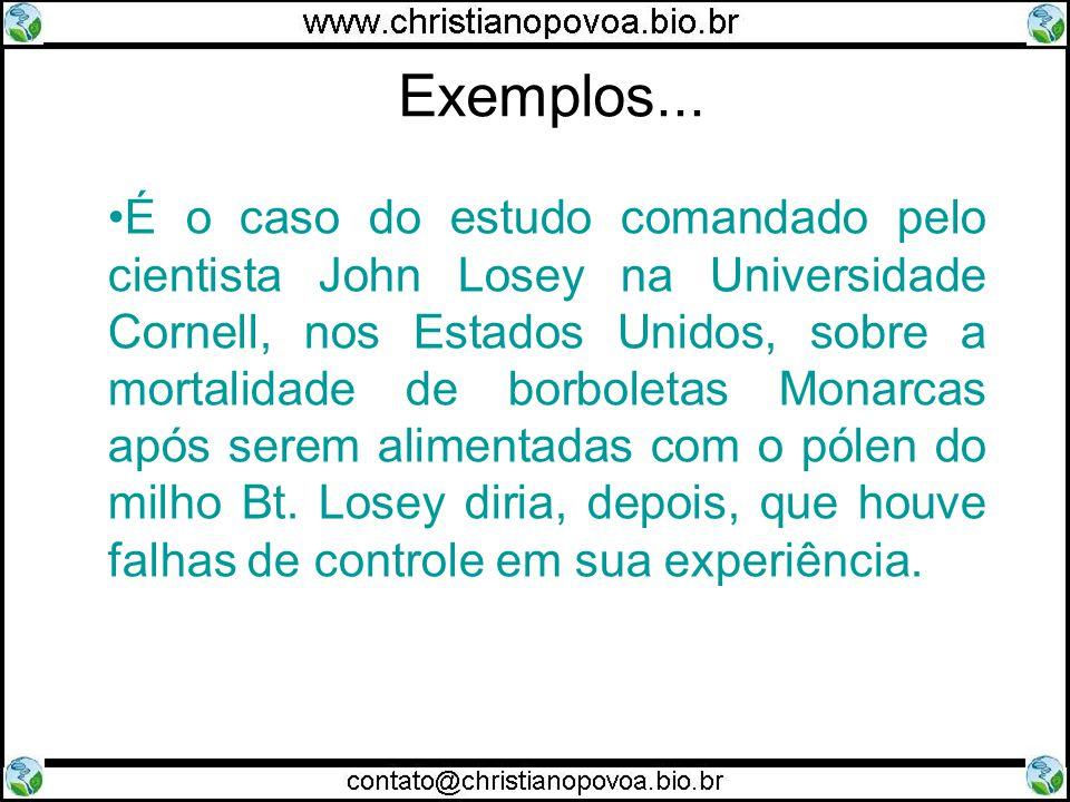 Exemplos... É o caso do estudo comandado pelo cientista John Losey na Universidade Cornell, nos Estados Unidos, sobre a mortalidade de borboletas Mona